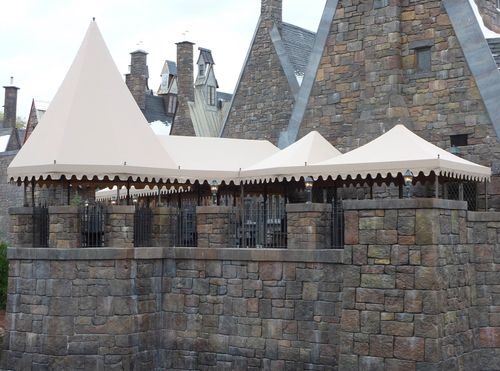 Wizarding World of Harry Potter 15
