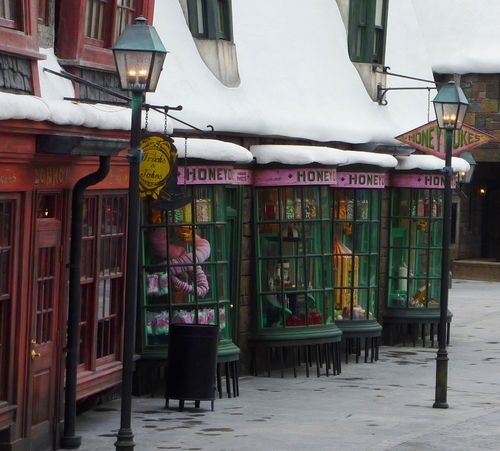 Wizarding World of Harry Potter 5