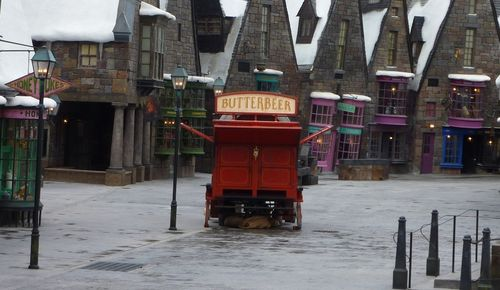Wizarding World of Harry Potter 9