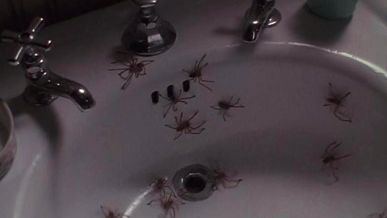 ARACHNOPHOBIA Spider Sink