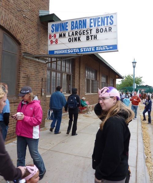 Minnesota State Fair 2010 17