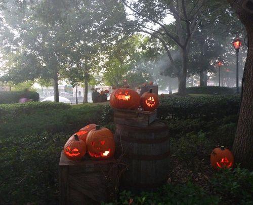 Halloween Horror Nights 20 37