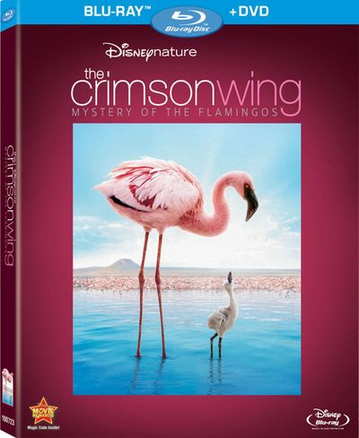 CRIMSON WING Blu-ray Cover