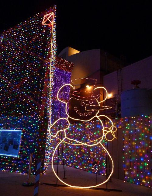 Disney's Hollywood Studios 45