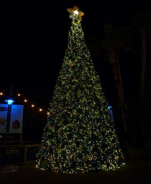 Sea World's Christmas Celebration 3