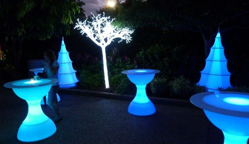 Sea World's Christmas Celebration 38