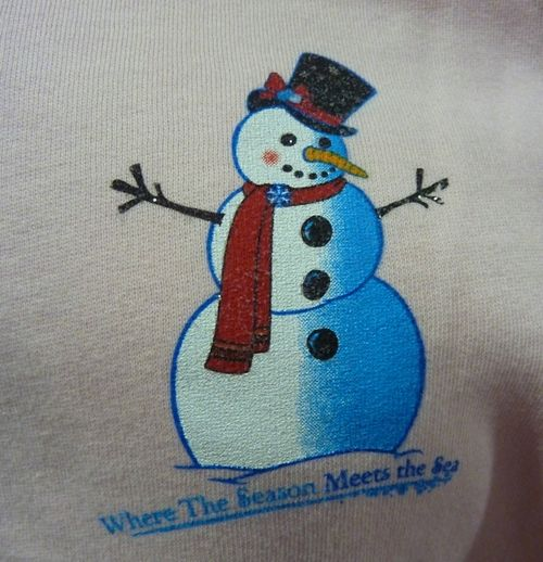 Sea World's Christmas Celebration 28