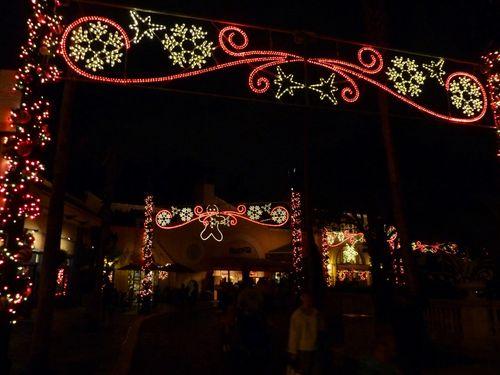 Sea World's Christmas Celebration 15
