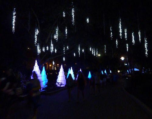 Sea World's Christmas Celebration 9
