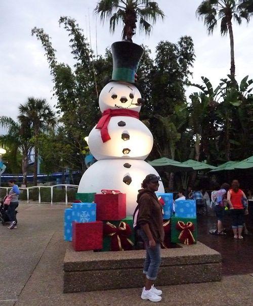 Sea World's Christmas Celebration 2