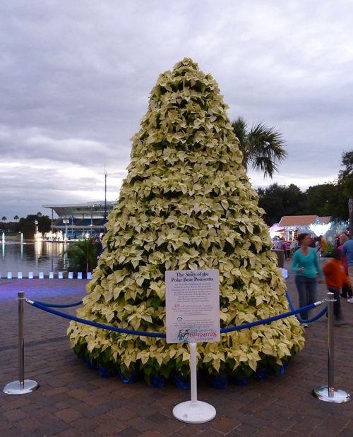 Sea World's Christmas Celebration 47