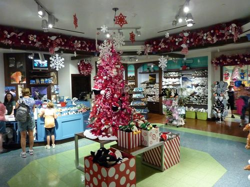 Sea World's Christmas Celebration 20
