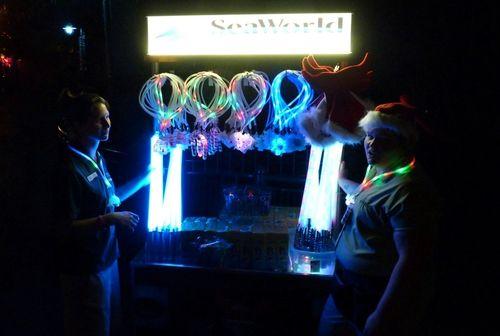 Sea World's Christmas Celebration 6