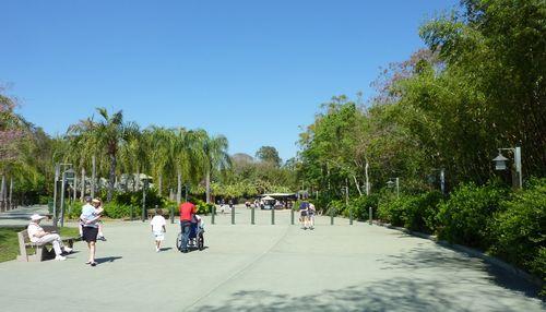 Disney's Animal Kingdom 1