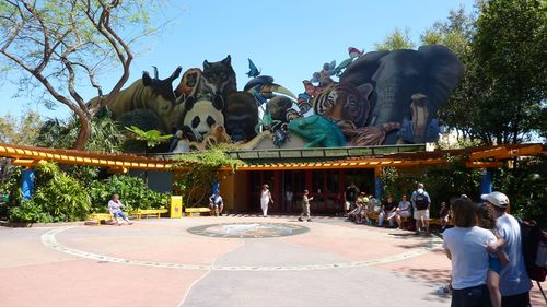 Disney's Animal Kingdom 11