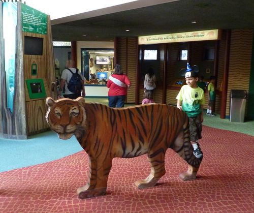 Disney's Animal Kingdom 14