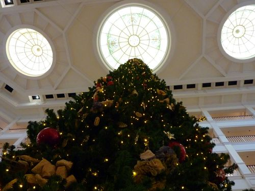 Walt Disney World Hotel Christmas 23