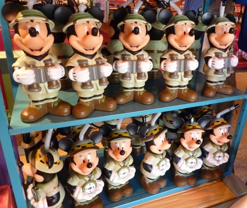 Disney's Animal Kingdom 23
