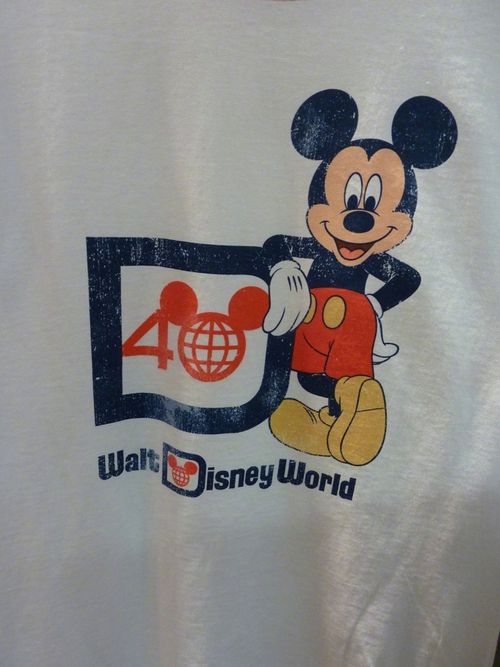 Disney's Animal Kingdom 25