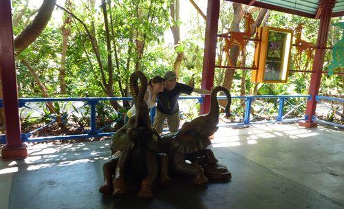 Disney's Animal Kingdom 9