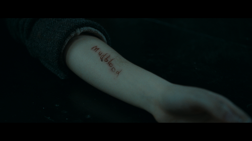 HARRY POTTER AND THE DEATHLY HALLOWS PART ONE Mudblood Cut