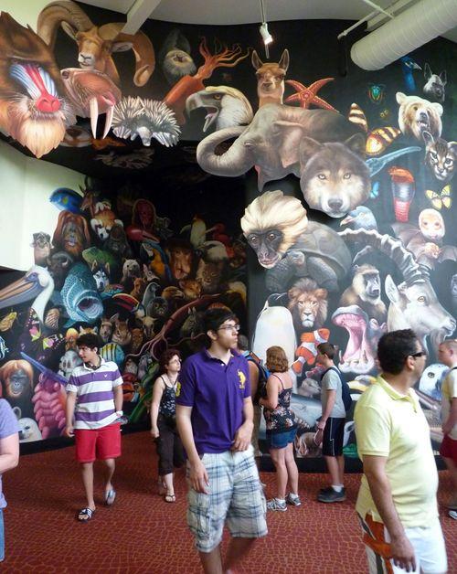 Disney's Animal Kingdom 15