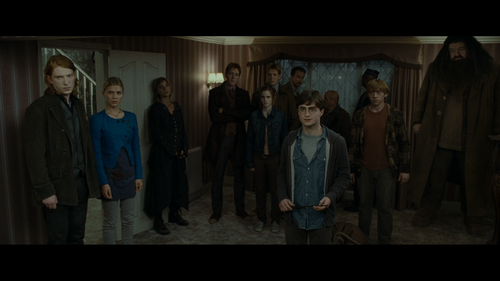 HARRY POTTER AND THE DEATHLY HALLOWS PART ONE Group