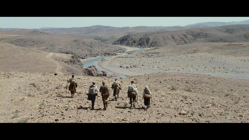 WAY BACK Desert