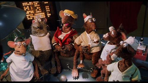 MUPPETS FROM SPACE Rizzo