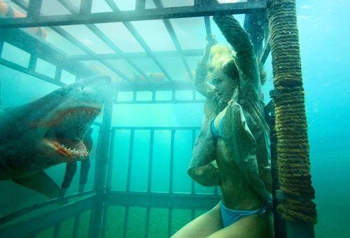 SHARK NIGHT 3D Shark