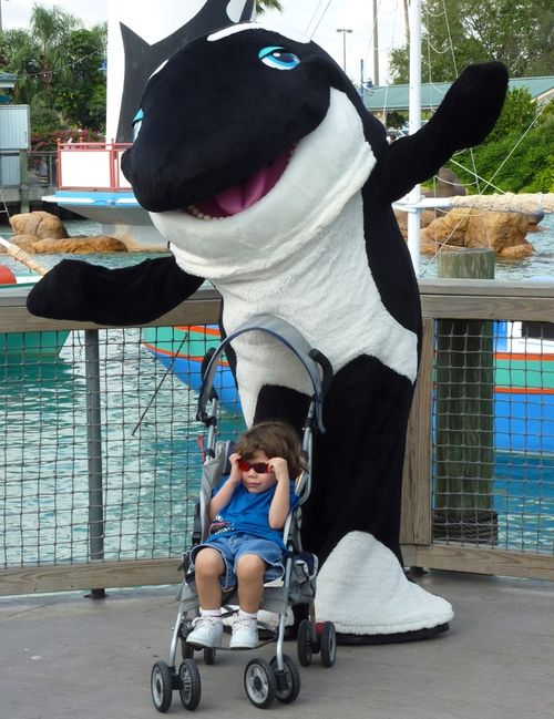 SEA WORLD ORLANDO 17