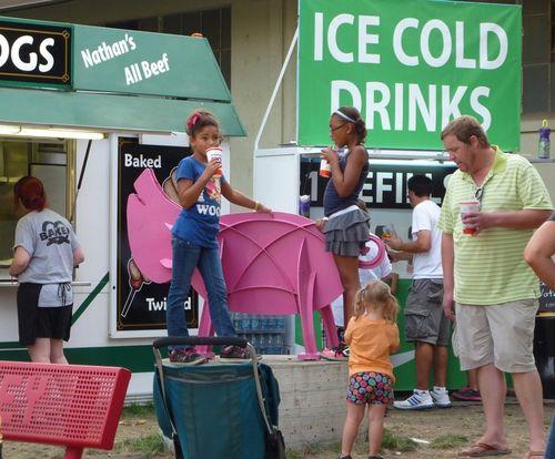 Minnesota State Fair 3