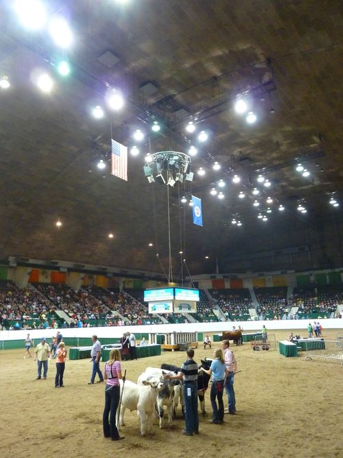 Minnesota State Fair 18