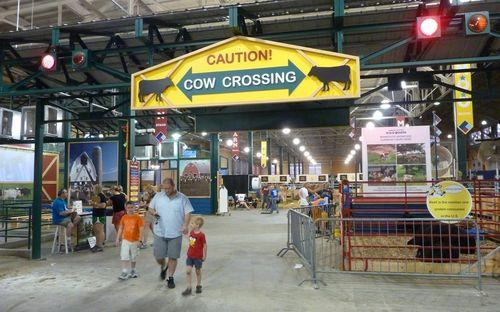 Minnesota State Fair 9