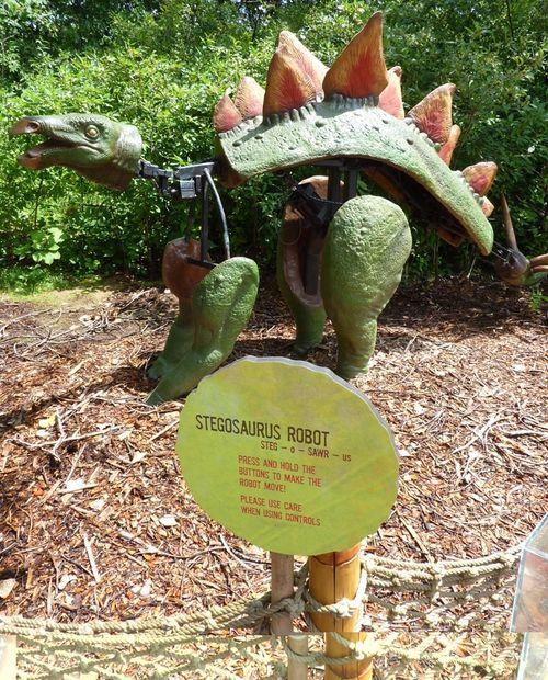 Minnesota Zoo Dinosaurs 19