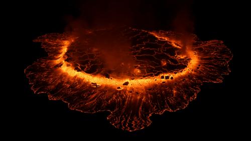 Life on Fire Wildlife on the Volcano's Edge