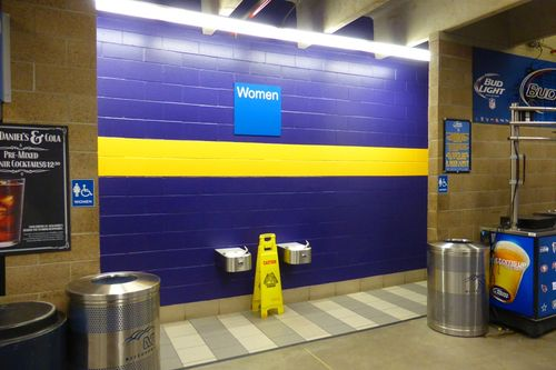 Minnesota Metrodome 44