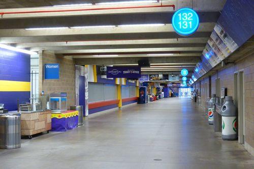Minnesota Metrodome 48
