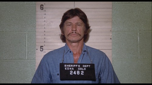 MR. MAJESTYK Charles Bronson