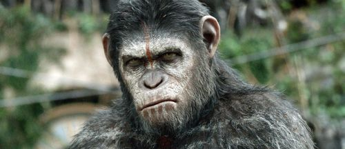 O-DAWN-OF-THE-PLANET-OF-THE-APES-facebook