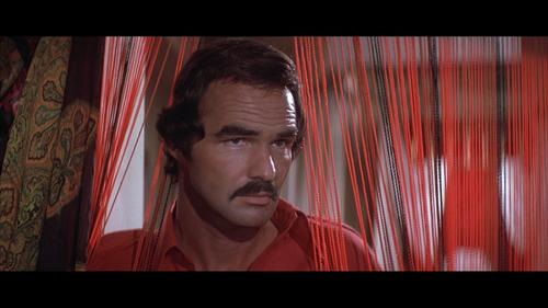 Gator Burt Reynolds